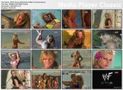 Various WWF Divas - Attitude Era Bikini TV Commercial