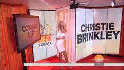 Christie Brinkley - Today Show - 2013-10-21 (1080i clip & 15 caps)